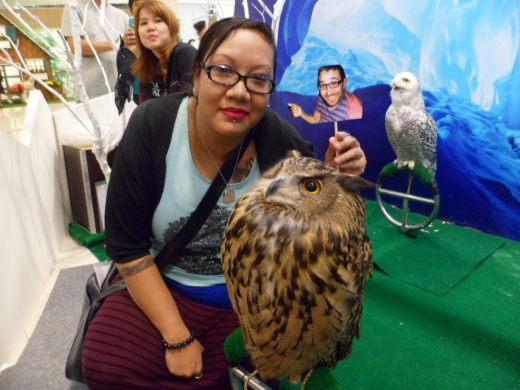 I had to spend over $30 in the shopping centre to get my photo taken with this owl and turned into a fridge magnet